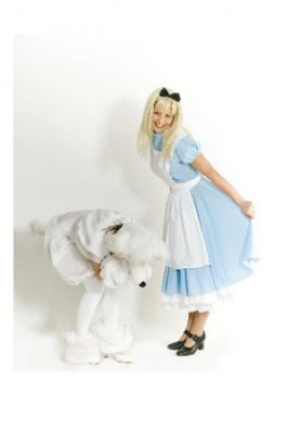 Alice  Imedemaalt kostüümid